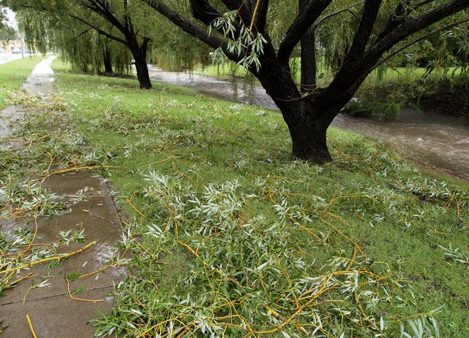 OLYEast Creek Toowoomba along Kitchener St Toowoomba  Photo: Doug Spowart