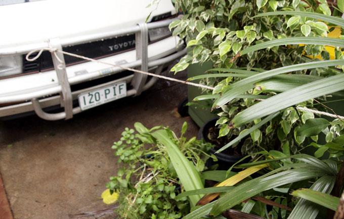 Tethered pot plants  PHOTO: Doug Spowart