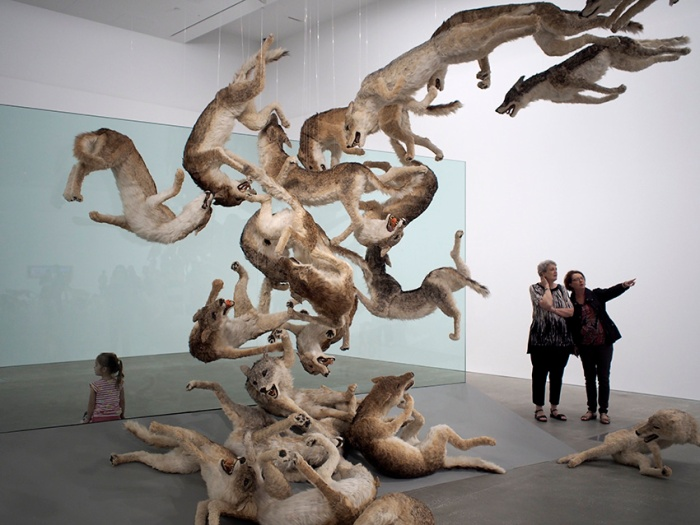 Cai Guo-Qiang: Head on 2006, GOMA.   Photo: Doug Spowart