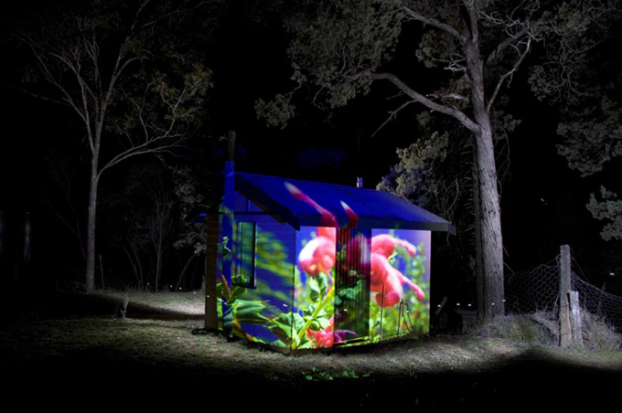 Projection - Myall Park Botanic Gardens.jp
