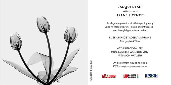Translucence invitation