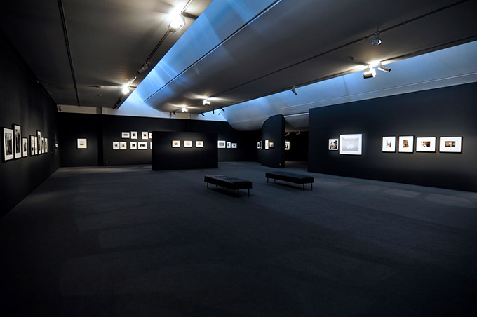 The Monash Gallery of Art WILDCARDS Exhibition - The walls were painted black!