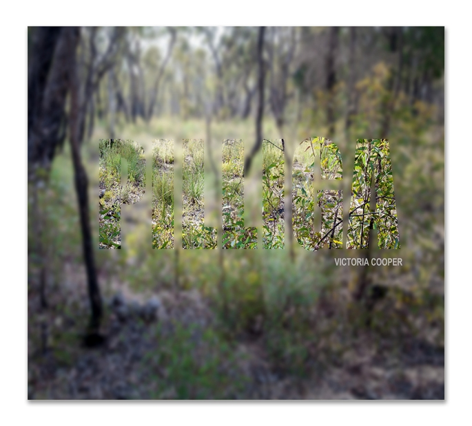 Pilliga- Cover-new-72