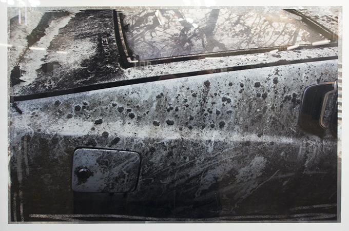 Michelle Vannier's 'Car Graveyard'