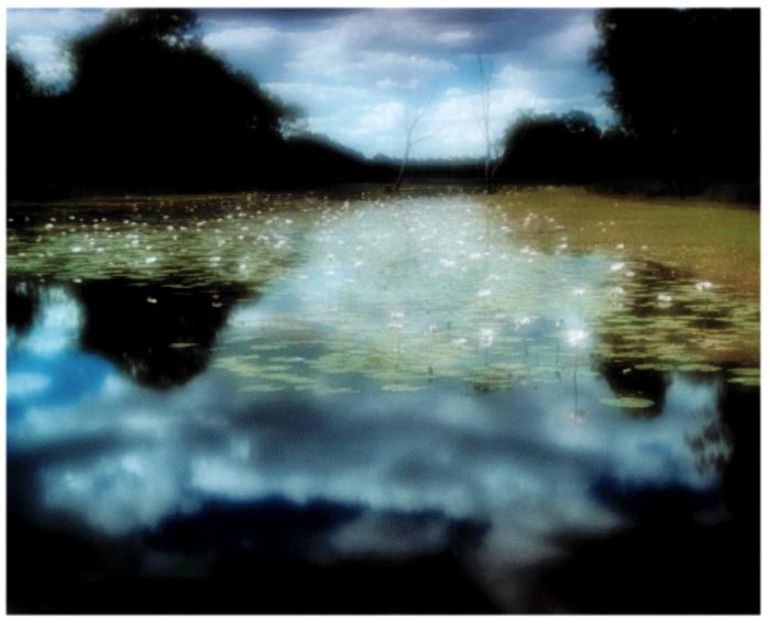 Myall-lake