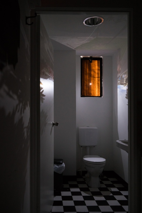 The camera obscura in the Maud toilet PHOTO: Louis Lim