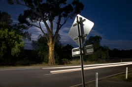 Nocturne Castlemaine: Pyrenees Highway and moon rise, Chewton
