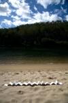 Beach-book1241-1000