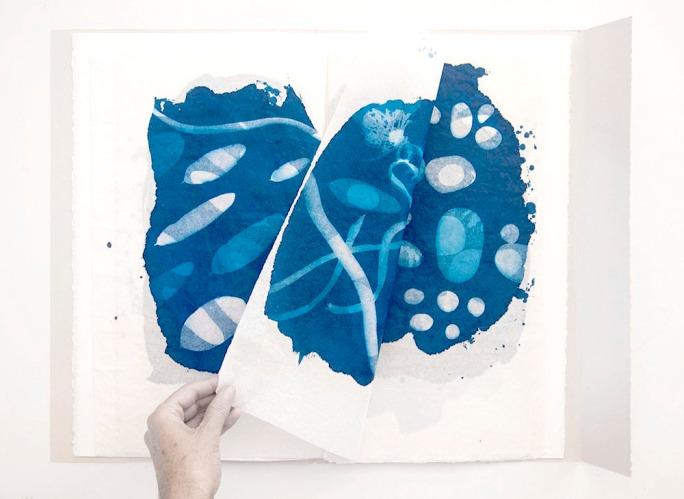 cyanotype artists books | wotwedid