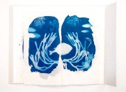 A page from the cyanotype artists book 'Tidal' a finalist in the Libris Artists Book Awards