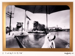 From the ICONS series EXPO88 - River sculptues Photo © Doug Spowart