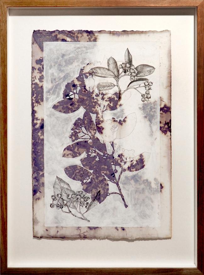 Debris 1 Linda Spowart 2019Ink, gesso and graphite on cotton .......... PHOTO: Doug Spowart